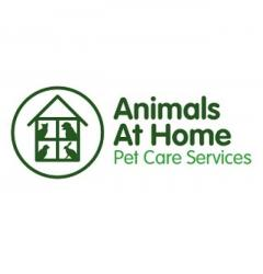 Animals At Home Essex Central