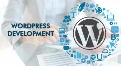 Website Repair Wordpress Theme Customization Low