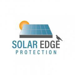 Solar Edge Protection Glasgow Solar Panel Bird P