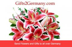 Send Best Christmas Gifts To Germany Online At L