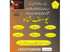 World Famuse Astrologer Yousaf Successful Life
