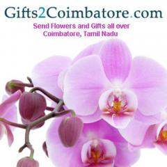 Send Birthday Gifts & Flowers To Coimbatore At L