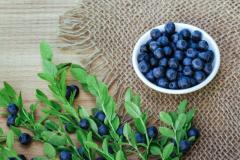 Bone Health Supplements In Uk