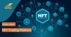 Develop The White-Label Nft Trading Platform To