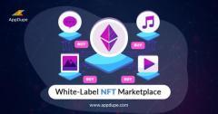 Get The Whitelabel Nft Marketplace Solution