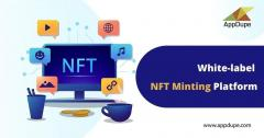 Customized Nft Minting Platform