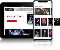 Netflix Similar App Development Solution