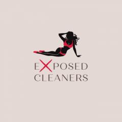 Lingerienaked Cleaner