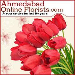 Send Friendship Day Gifts To Ahmedabad