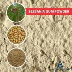 Sesbania Gum Powder Manufacturer & Exporter In I
