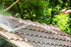 Roof Cleaning & Moss Removal Rochester