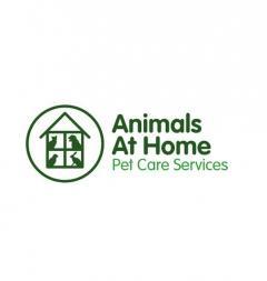 Animals At Home Bath