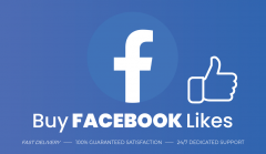 Buy Real Facebook Page Likes From Sociallym