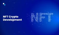 Nft Crypto Development