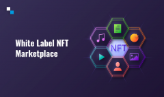 What Is The Best Way To Start White Label Nft Ma