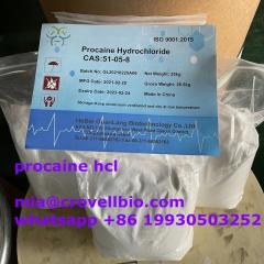 Procaine Supplier In China Cas 5086-74-8  Whatsa