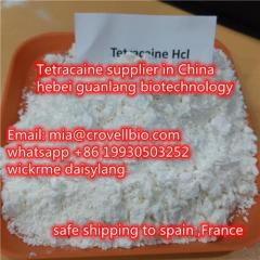 Tetracaine Cas 136-47-0 Supplier In China  Whats