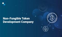 Top-Notch Non Fungible Token Development Company
