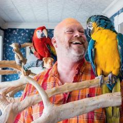 Macaw Parrots And Parrots Eggs For Sale