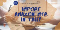 How To Import Bank Statement In Tally