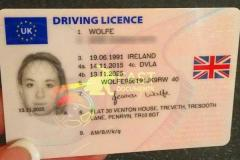 Buy Drivers License Without Theoretical And Prac