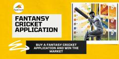 Buy A Fantasy Cricket Application And Win The Ma