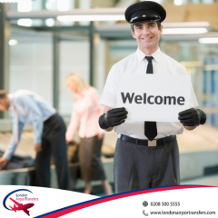 Meet And Greet Airport Services