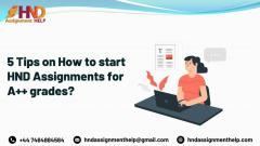 5 Tips On How To Start Hnd Assignments For A Gra