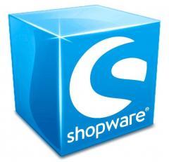 Shopware Developers  Shopware Theme Design & Dev
