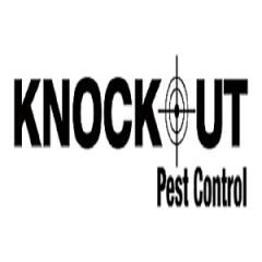 Pest Control East Sussex