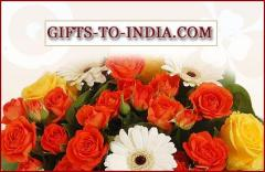 Online Holi Gift Delivery In India Same Day