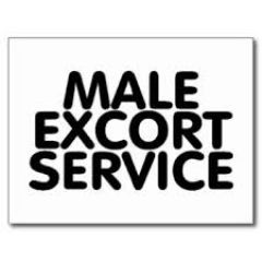 v.i.p mature male englsih escort available