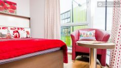 Deluxe Studio - Colourful Studios with a Roof Terrace in Cool Camden Town