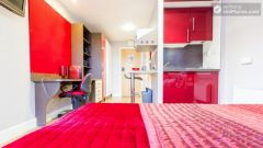 Deluxe Studio - Colourful Studios With A Roof Te