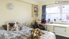 Standard Single Ensuite Bedroom - Awesome student residence in the city centre