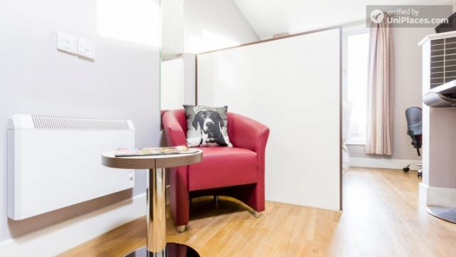 Deluxe Studio - Colourful Studios with a Roof Terrace in Cool Camden Town 3 Image