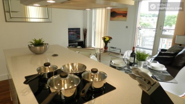Rooms available - Modern 2-bedroom apartment by Deptford Creek in Greenwich 12 Image