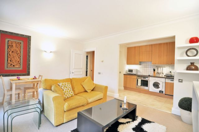 A contemporary luxurious one bedroom apartment 4 Image