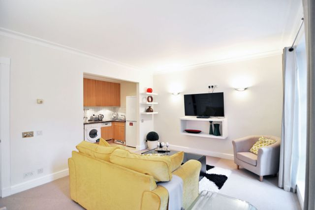 A contemporary luxurious one bedroom apartment 5 Image