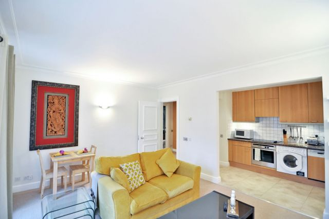 A contemporary luxurious one bedroom apartment 6 Image