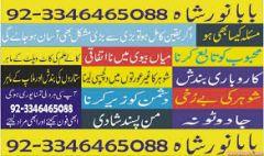 Muslim astrologer  noor 00923346465088