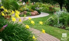 Landscaping Service North London