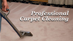 SPOTLESS CARPET CLEANERS. ALL LONDON COVERED