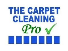 LOCAL QUALITY CARPET CLEANING COMPANY, POWERFUL HOT WATER EXTRACTI