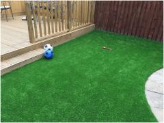 Adelaide 20Mm Artificial Grass