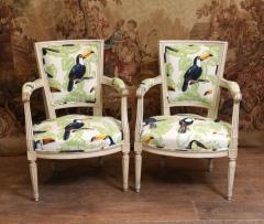 Buy Pair Painted Arm Chairs Regency Tucan Print