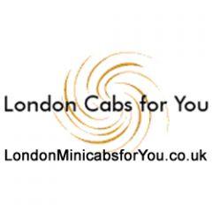 London Mini Cabs Airport Transfers