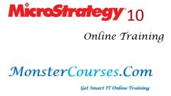 Microstrategy Online Training at Monstercourses