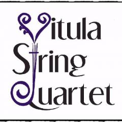 Vitula String Quartet at the Black Swan