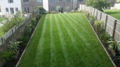 Artificial grass Milton Keynes